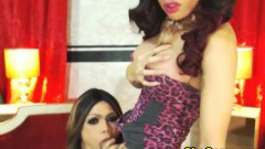 Two Asian Ladyboy Masturbates And Blow Each Others Dick