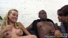 Big boob beauties wrestling a black guy
