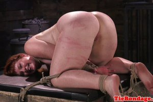 Spreadeagled domination slave tied up and whipped