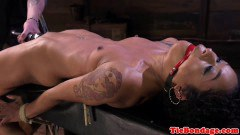 Maledom pegs black domination sex slave body for whipping